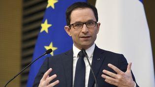 Benoît Hamon a annoncé la sortie de deux ouvrages d'ici la fin du mois de mars. (ERIC FEFERBERG / AFP)