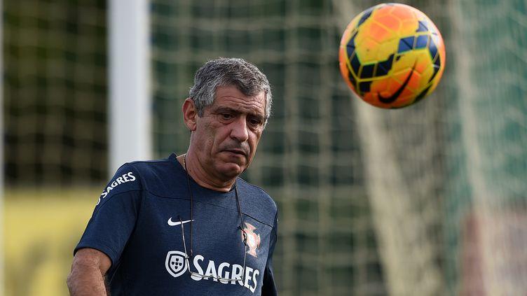 Fernando Santos mise tout sur Cristiano Ronaldo (FRANCISCO LEONG / AFP)