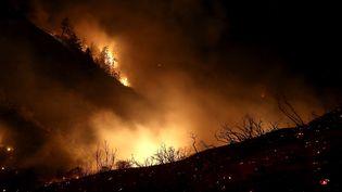 Un incendie ravage une forêt près d'Ojai, en Californie (Etats-Unis), le 8 décembre 2017. (JUSTIN SULLIVAN / GETTY IMAGES NORTH AMERICA / AFP)