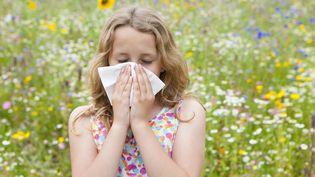 Les allergiques doivent se préparer à une recrudescence de pollens dans les airs, d'ici la semaine prochaine. (ECHO / CULTURA RF / GETTY IMAGES)