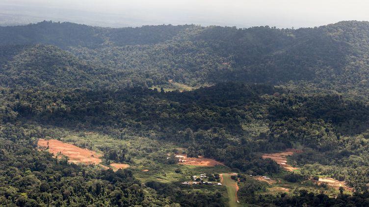 Le camp de base du projet Montagne d'or, en Guyane, en pleine forêt amazonienne, le 12 octobre 2017. (JODY AMIET / AFP)
