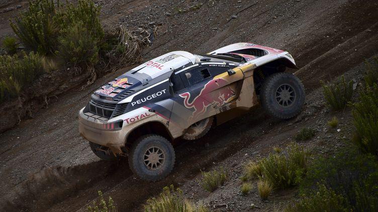 Sebastien Loeb (Peugeot)  (FRANCK FIFE / AFP)