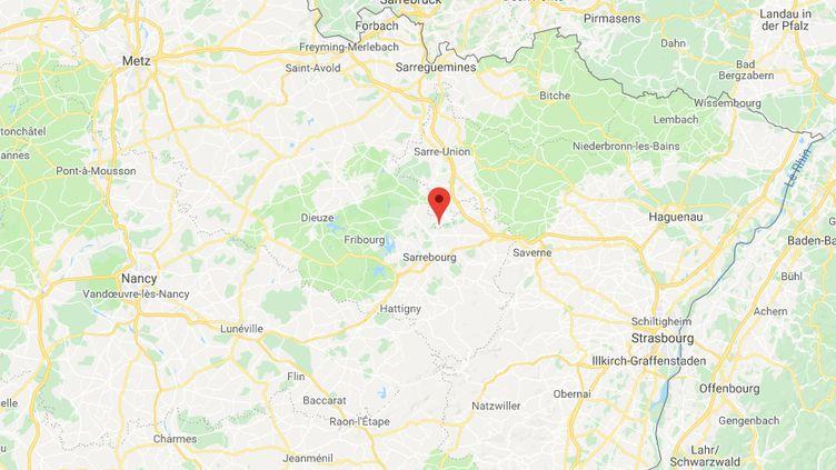 Les faits se sont déroulés dansla commune de Goerlingen, à la frontière entre la Moselle et le Bas-Rhin. (CAPTURE D'ECRAN GOOGLE MAPS)