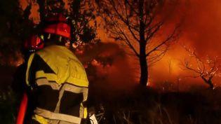 Incendie dans le Var : le combat héroïque des pompiers contre les flammes (France 2)