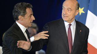 Alain Juppé (droite)s'est fait huer par des militants UMP lors d'un meeting de Nicolas Sarkozy (gauche) à Bordeaux (Gironde), le 22 novembre 2014. (JEAN-PIERRE MULLER / AFP)