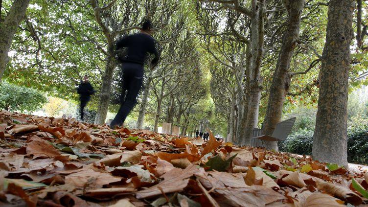 Des joggeurs au Jardin des plantes, à Paris. (MANUEL COHEN / AFP )