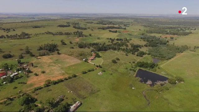 Afrique du Sud : les fermiers blancs expropriés ?