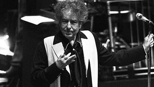 Bob Dylan au Royal Albert Hall (Londres) en novembre 2013.  (Danny Clifford/Hottwire.net/WENN.com/Sipa)