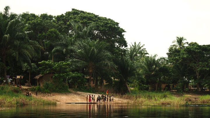 Paysage de la région du Lac Télé en République du Congo. (Lac Télé Community Reserve)