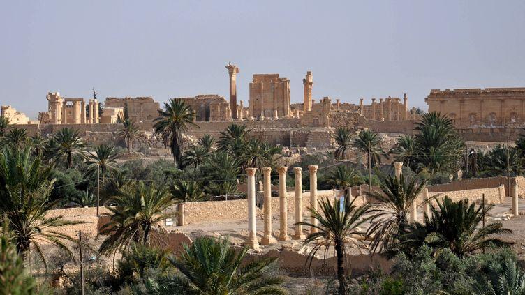 Vue de Palmyre, en Syrie, le 18 mai 2015, avant sa prise par l'Etat islamique. ( AFP )