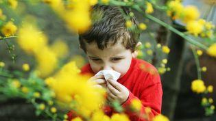 Un enfant allergique au pollen. (MAXPPP)
