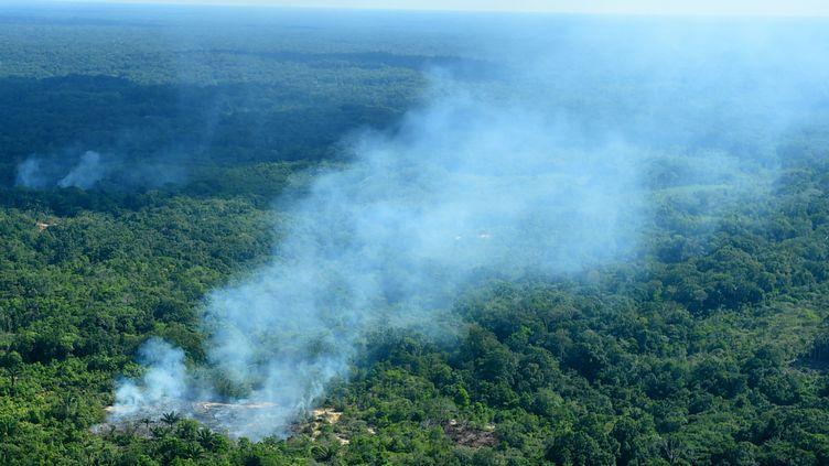 La fumée s'élève de la forêt amazonienne, le 21 août 2019, à Sao Gabriel de Cachoeira, au Brésil. (CHICO BATATA / DPA / AFP)