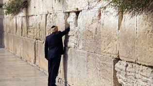 Donald Trump glisse un message dans le Mur des Lamentations, le 22 mai 2017, à Jérusalem. (RONEN ZVULUN / AFP)