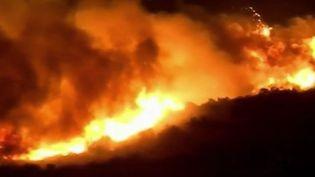 Incendie en Californie. (FRANCE 2)