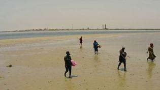 Sénégal : à la découverte de l'île-coquillage (France 2)