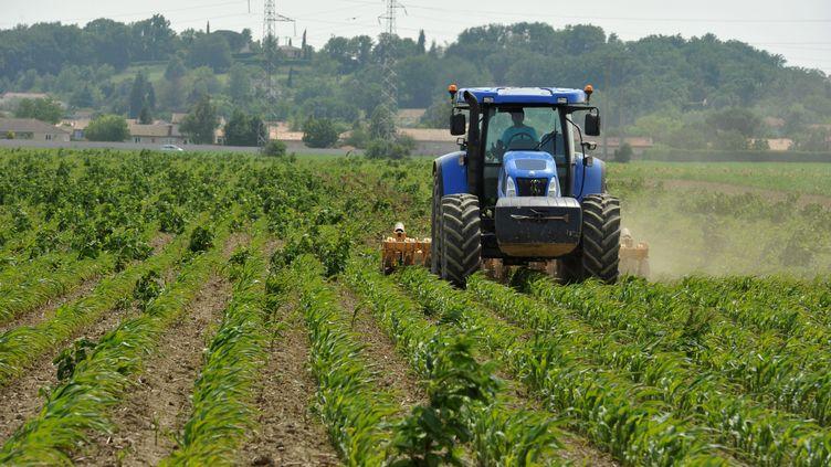 Les gendarmes soutiennent les agriculteurs en leur donnant des conseils pour renforcer la sécurité, avec notamment un système d'alerte par SMS. (  MAXPPP)