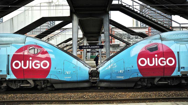 OUIGO, est une offre TGV à bas prix, dont les billets sont accessibles uniquement en ligne. (SEBASTIEN JARRY / MAXPPP)