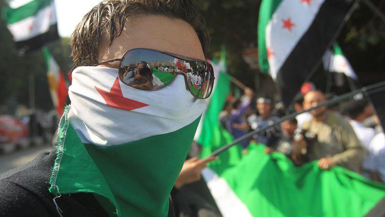 Des manifestants protestent au Caire contre le régime de Bachar Al-Assad, le 12 novembre 2011. (KHALED DESOUKI / AFP PHOTO)