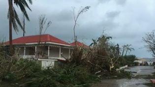 Tout comme l'île de Saint-Martin, Saint-Bathélémy a été ravagée par les rafales de l'ouragan Irma. (France 2)