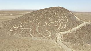 Un géoglyphe de chat découvert à Nazca. (- / PERUVIAN MINISTRY OF CULTURE)