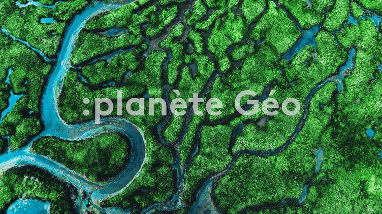 """""""Planète Géo"""" : une photo, un reportage, une carte ou un portrait issus du magazine """"Géo"""". (ARTHUR DEBAT / GETTY IMAGES)"""