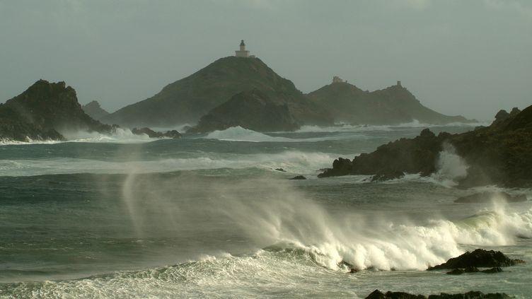 Le vent souffle sur les côtes de la Corse-du-Sud, le 3 février 2016. (JEAN HARIXCALDE / ONLY FRANCE / AFP)