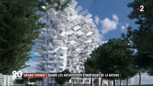 Grand format : quand la nature inspire les architectes