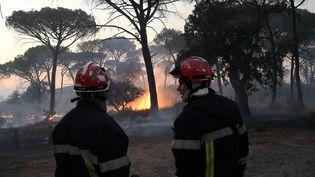 Un incendie de forêt, près de Gonfaron, dans le département du Var, le 17 août 2021. (NICOLAS TUCAT / AFP)