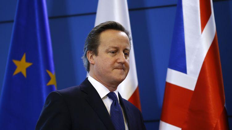Le Premier ministre britannique David Cameron, lors d'une conférence de presse, à Varsovie (Pologne), le 10 décembre 2015. (KACPER PEMPEL / REUTERS)