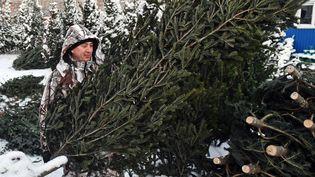 Les sapins de Noël sont issus d'une production agricole raisonnée (GETTY IMAGES)