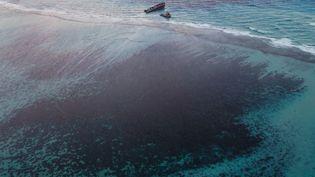 Le MV Wakashio et les traces de pollution dans le récif, le 17 août 2020 dans la baie de Marine Park, à Maurice. (AFP)