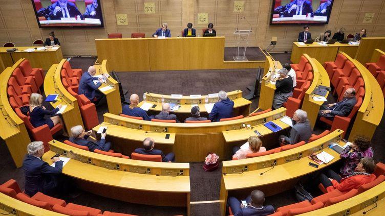 Une audition menée par la commission spéciale bioéthique au sein du Sénat, le 30 octobre 2019 à Paris. (CARINE SCHMITT / HANS LUCAS / AFP)