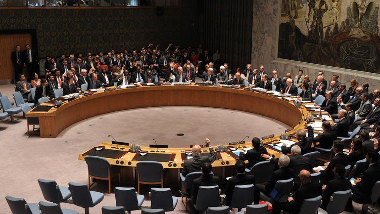 Le Conseil de sécurité des Nations unies, le 27 septembre 2013 à New York (Etats-Unis). (STAN HONDA / AFP)