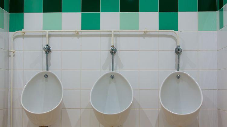 Le système de ce plombier permet d'alimenter les chasse-d'eau avec l'eau des douches et des lavabos. (GARO / PHANIE / AFP)