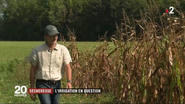Sécheresse : l'irrigation en question