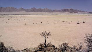 La Namibie est le pays le plus sec de l'Afrique sub-saharienne. (TILL LEESER / BILDERBERG / AFP)