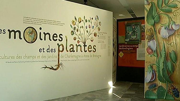 Exposition à Landevennec sur les moines et les plantes  (France3/Culturebox)
