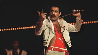 Le chanteur du groupe Queen,Freddy Mercury, en 1984. (LEEMAGE / AFP)