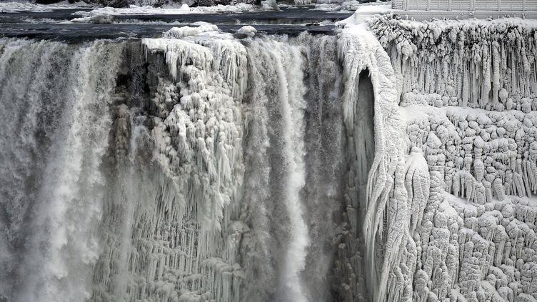 Les chutes du Niagara, partiellement gelées, le 8 janvier 2014. (AARON HARRIS / REUTERS)