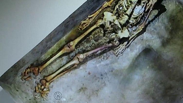 Pompéi :découverte d'une momie exceptionnellement bien conservée (France 2)