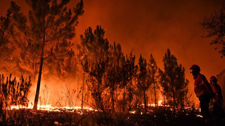Des pompiers luttent contre un feu de forêt à Vale de Abelha, au Portugal, le 16 août 2017. (PATRICIA DE MELO MOREIRA / AFP)