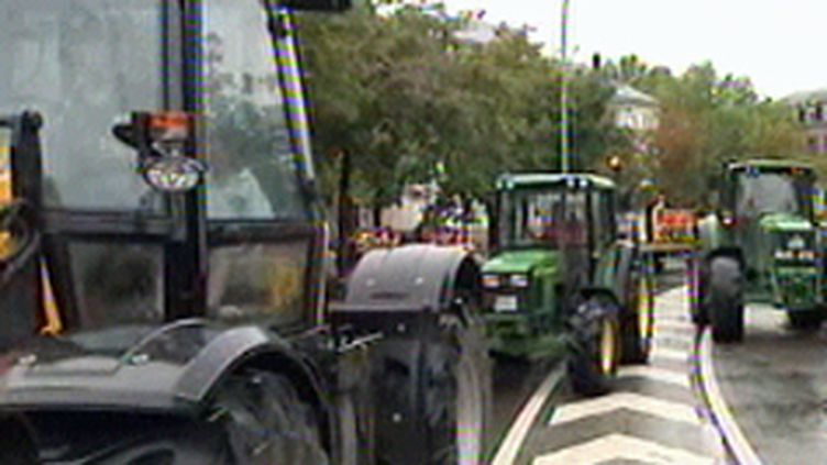 les producteurs laitiers européens convergent vers le centre ville pour manifester. (© France 3)