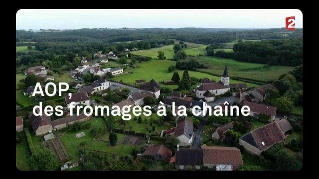 AOP : des fromages à la chaîne