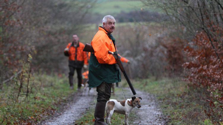 Les journées de chasse, ici le 13 novembre 2010 dans la forêt des Angevillers (Moselle), ont causé 16 morts en 2011/2012, un chiffre en baisse depuis trois ans. (HECKLER PIERRE / MAXPPP)