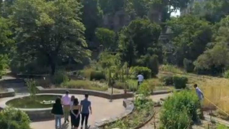 La série du week-end du 13 Heures vous emmène à la découverte d'un véritable musée de verdure à ciel ouvert, à Montpellier (Hérault). (FRANCE 2)