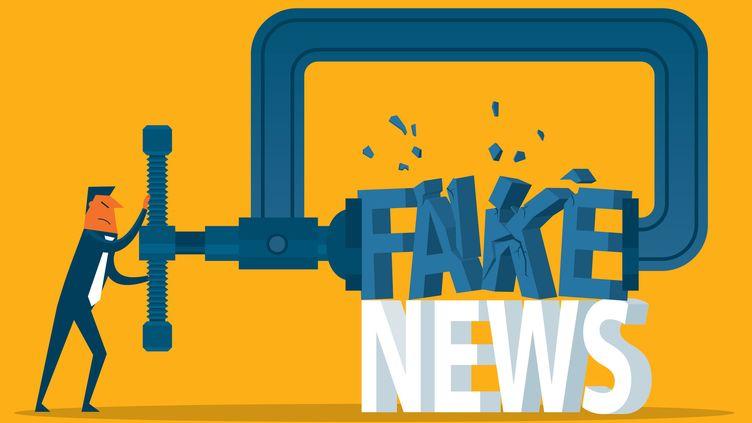 Comment fermer le robinet des fake news et de la désinformation sur internet et les réseaux sociaux ?  Aude Favreet Sylvain Louvet ont enquêté pendant près d'un an sur ce marché. (Illustration) (SORBETTO / DIGITAL VISION VECTORS / GETTY IMAGES)