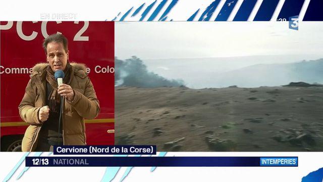 Eleanor : les incendies ont ravagé 2 000 hectares en Corse