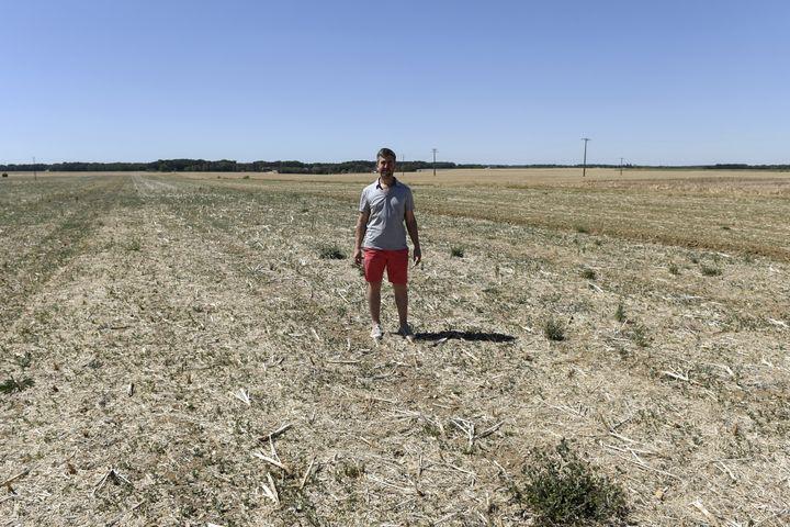Un agriculteur de Chevannes (Loiret) se tient dans un champ en manque d'eau, le 7 août 2020. (ERIC PIERMONT / AFP)