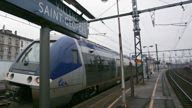 Un train est à quai dans la gare deVilleneuve-Saint-Georges (Val-de-Marne), le 8 janvier 2006. (JEAN-PIERRE MULLER / AFP)