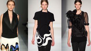 Le défilé automne-hiver 2014-15de Victoria Beckham lors de la fashion week de New York, en février 2014  (REX/REX/SIPA)